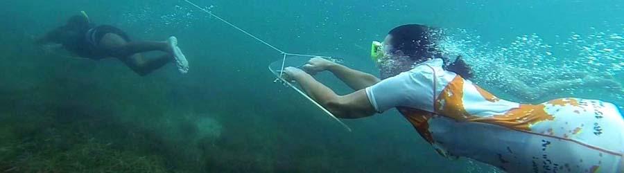 bocas vacations1 snorkel