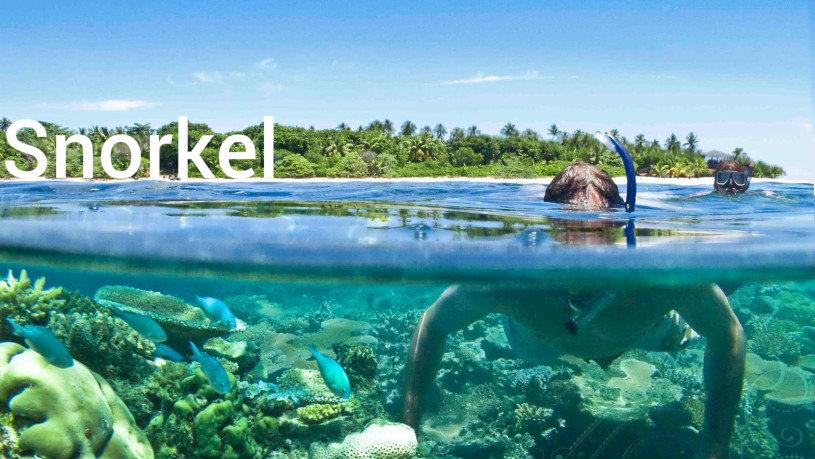 Snorkel - surf guide bocas del toro