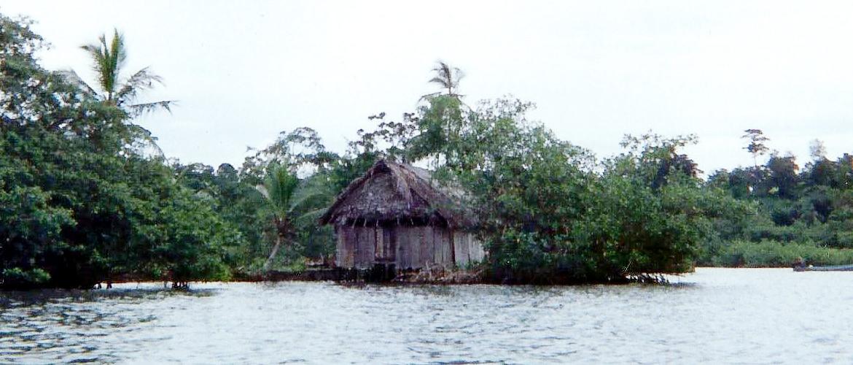 Timorogo