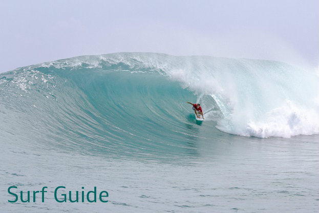 surf guide in bocas del toro