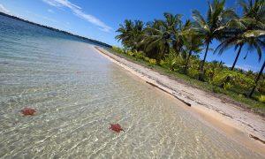 Playa Estrellas