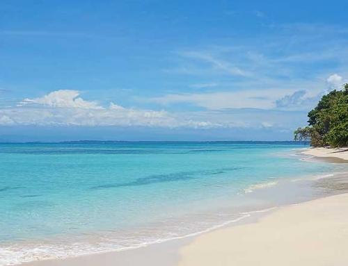 Bocas del Toro y sus mejores Playas