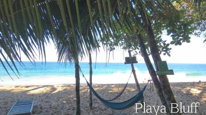 playa bluff 2