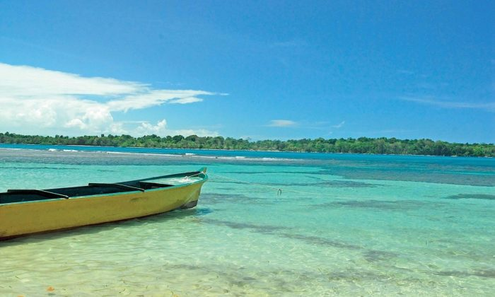 playa tortuga bocas del toro Panamá