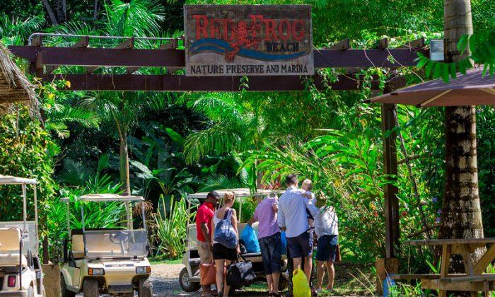 Red Frog Beach Island Resort3