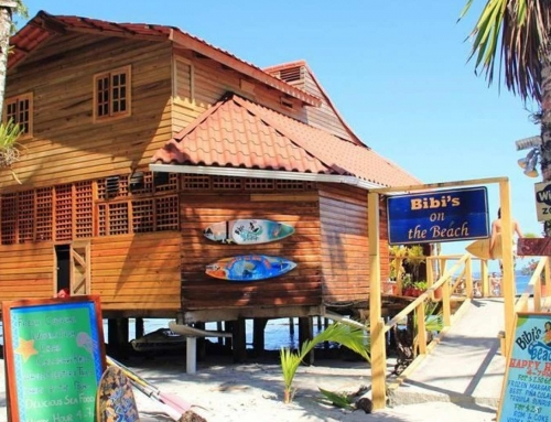 Bibi's on the Beach Restaurant – Surfside Seafood