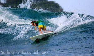 bocas del toro surf guide