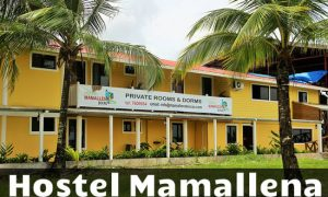 hostel-mamallena-bocas